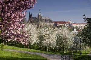 Private walks Prague Castle, Hradčany, Malá strana