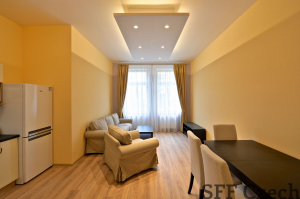 Luxury 2 bedroom flat Vinohrady Prague 2Machova