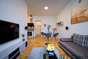 Luxury apartment next Prague center Sokolovska