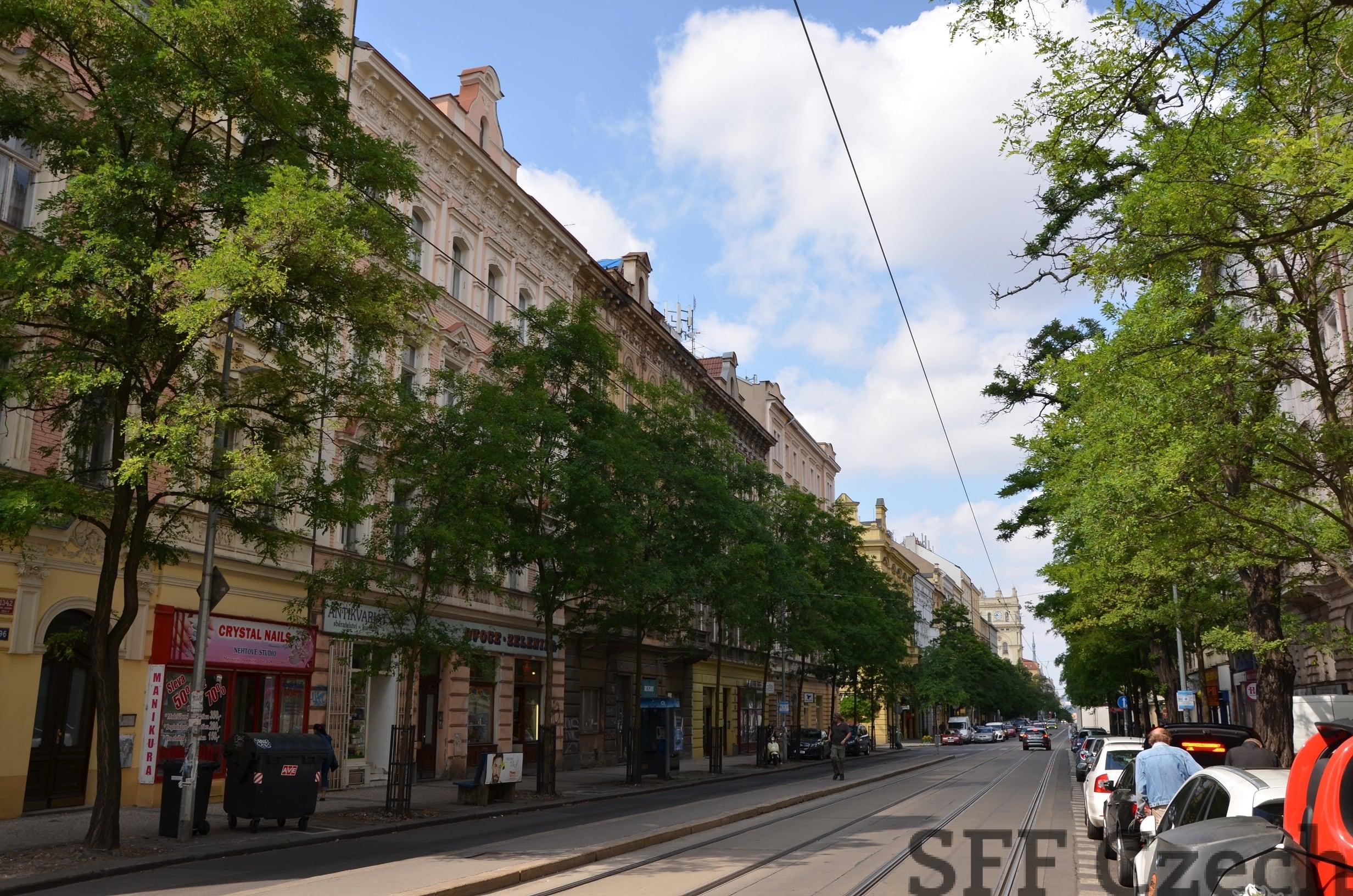 Flatshare flat to rent Vinohrady, Prague 2, Perunova