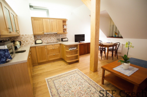 Small fully furnished flat, Prague 9