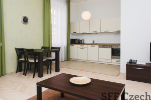 Luxury fully furnished apartment in Prague 1