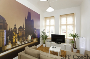 Luxury fully furnished apartment for rent Andel