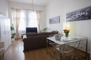 Luxury flat for short-term rent close to center of Prague