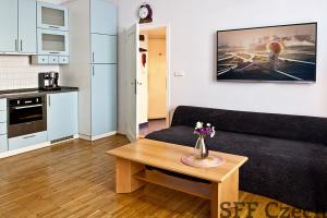 Luxury apartment for rent Parizska street short-term