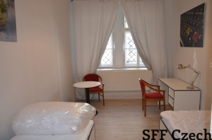 Short-term rent flat in Prague 3, fully furnished
