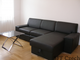 Furnished apartment, Prague 2, Vinohrady, Manesova