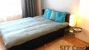 Modern furnished flat Prague 9, Podebradska