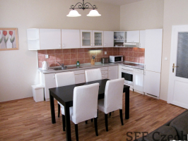 Fully furnished apartment Prague 2 Zahrebska