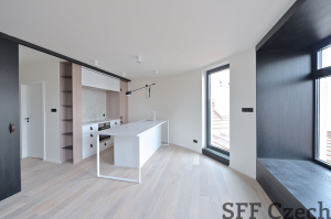Modern flat to rent Jiriho z Podebrad Vinohrady