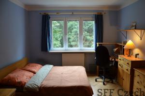 Fully furnished 2 room apartment Prague 10 Nucicka