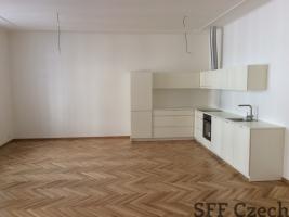 Luxury 2 bedroom apartment Pechackova next to river