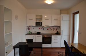 Nice furnished flat Prague 6 Brevnov Patockova