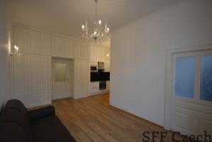Luxury apartment in Prague 1 center Hastalska