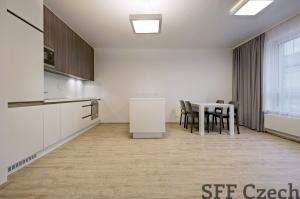 Modern apartment close to Namesti miru Donska