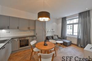 Nice 2 bedroom flat close Andel Holeckova