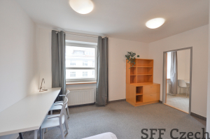 Cheap fully furnished flat 1+1 Prague 7 close center