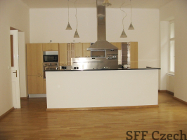 2 bedroom luxury flat Vinohrady Manesova