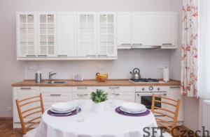 Furnished one bedroom flat Jana Masaryka