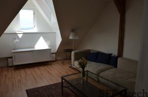 3 bedroom next Jiriho z Podebrad Na Svihance