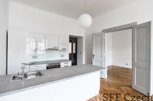 New nice apartment 4+kk close metro Krizikova