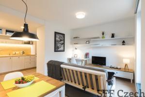 Close to Dejvicka modern new furnished flat
