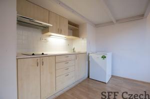 Cheap flat Francouzska close Namesti miru