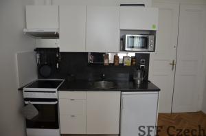 Cheap apartment 1+kk Koubkova Namesti miru