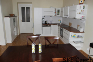 Manesova 3 bedroom flat close Namesti miru