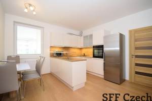 Nice furnished flat close center Drahobejdova