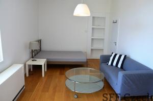 Bulharská apartment for rent close to Namesti miru