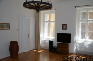 Nice large 1 bedroom apartment Zitna in center