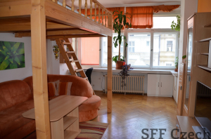Apartment Stefanikova 1+kk Andel close center