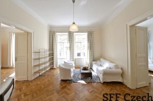 Luxury apartment Vinohrady next center Manesova