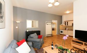 Apartment close to Namesti miru Na Kozacce