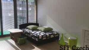 New furnished studio in Prague 10 close center