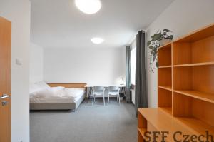 Furnished flat close to center Jankovcova