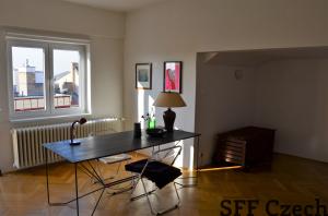 Nice cozy studio next Namesti miru Americka