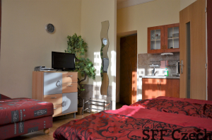 Nice small cheap studio to rent in Prague 5