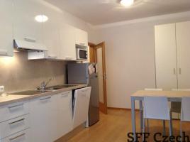 Modern furnished 1 bedroom flat Prague 8