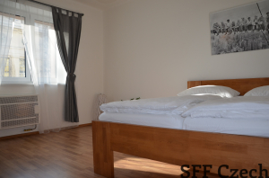 Nice fully furnished 1 bedroom apartment Podoli