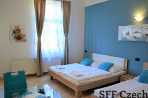 Furnished studio Prague 2 Legerova Nove mesto