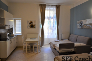 Nice studio to rent I.P.Pavlova Prague 2 Legerova