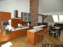Luxury 2 bedroom apartment Prague 2