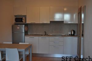 Modern furnished apartment Karlin Prague 8