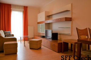 Modern apartment Pod Karlovem close to I.P.Pavlova