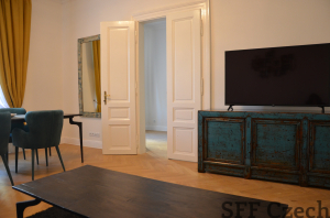 Luxury 2 bedroom apartment Prague 2 Vinohrady
