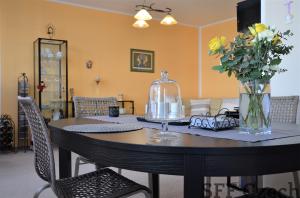 Nice furnished apartment Andel Randova 2+kk