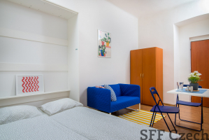 Nice cheap furnished apartment close to center Prague