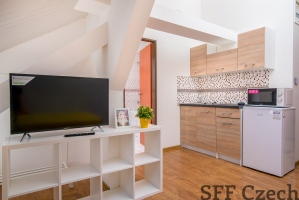 Nice furnished apartment close center Nusle